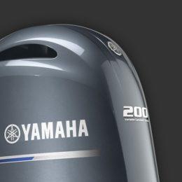 Foto Yamaha F 200G - 1